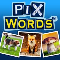 Cele mai bune jocuri ale lunii Octombrie : Shadow Fight 2, PixWords, Poker.
